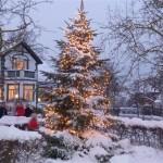 """Juletræet ved """"Kagerullen"""""""